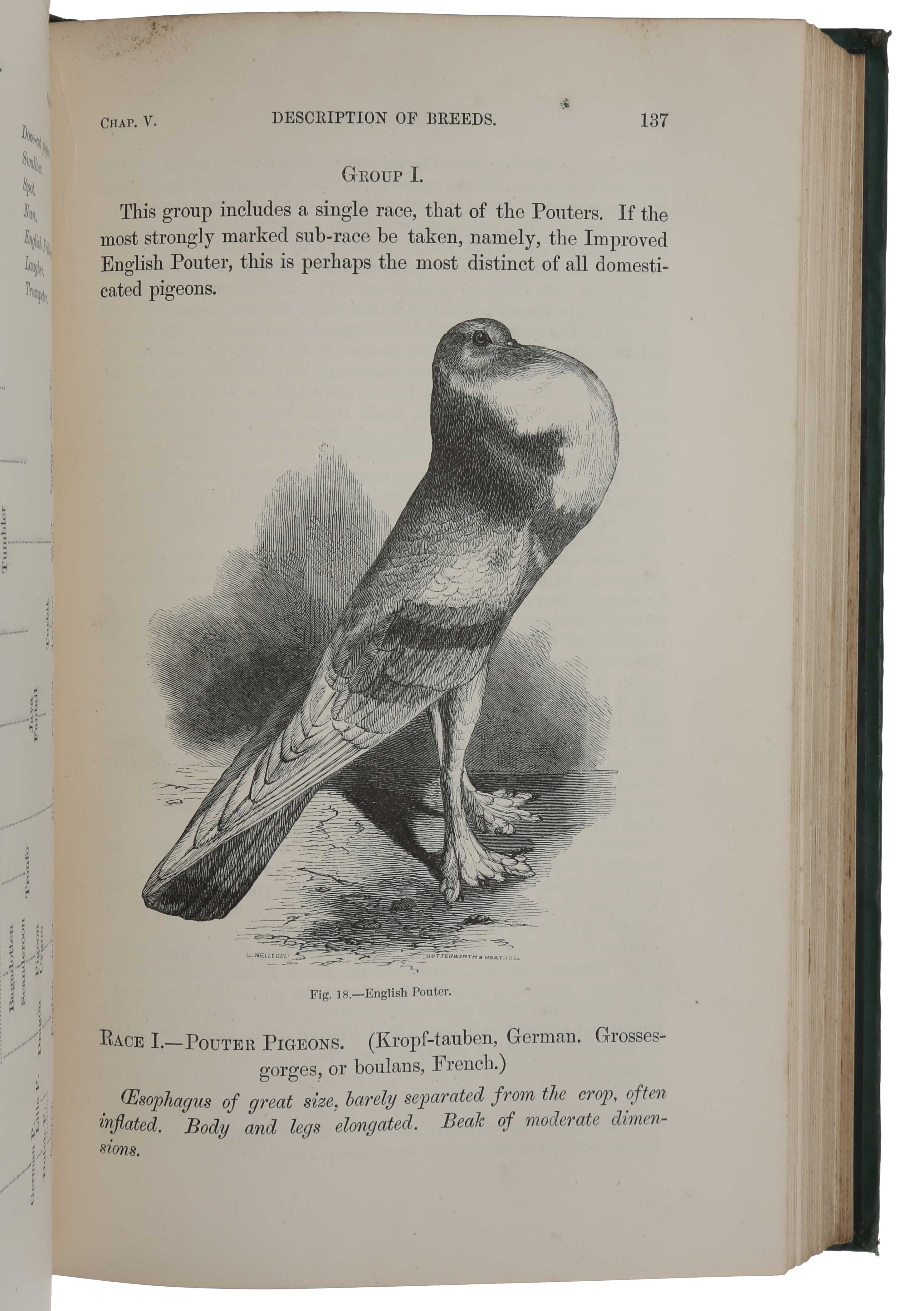 The Variation of Animals and Plants under Domestication by Charles DARWIN  on SOPHIA RARE BOOKS