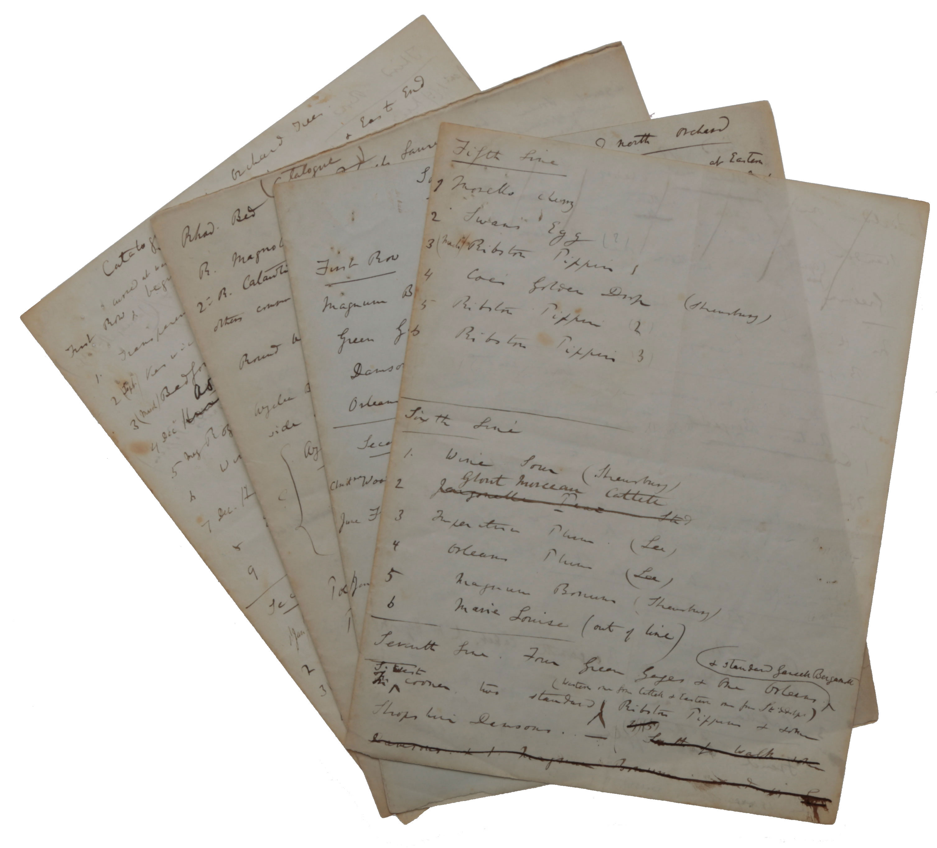 Autograph eleven-page manuscript on six leaves, listing the wide variety of trees and other plants in the grounds of Down House during 1844-1846 when extensive planting and landscaping took place. Charles DARWIN.
