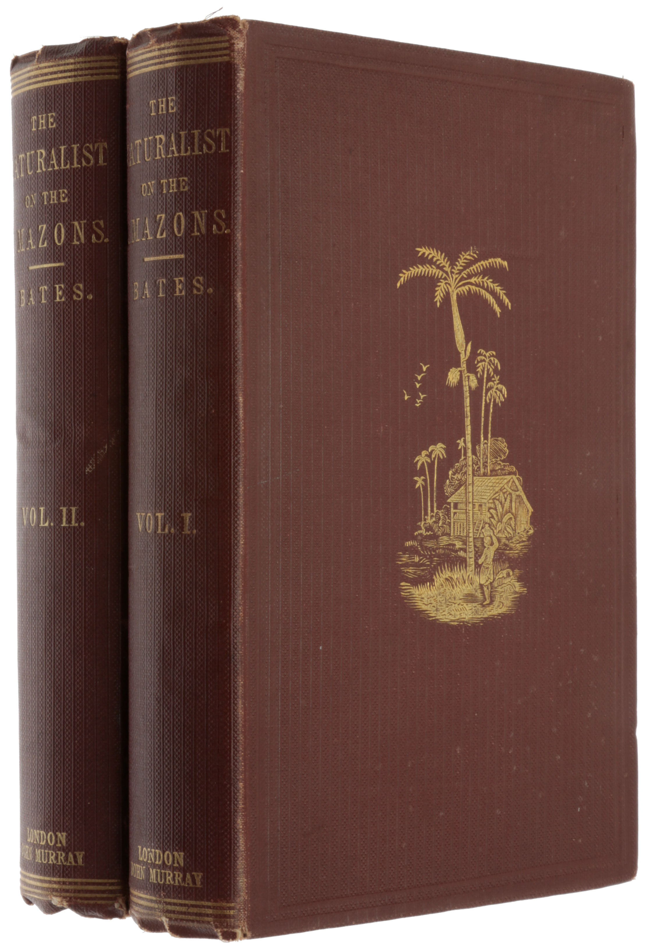 The naturalist on the River Amazons, a record of adventures, habits of animals, sketches of Brazilian and Indian life and aspects of nature under the Equator during eleven years of travel. Henry Walter BATES.