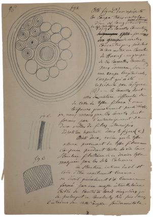 Cours de Physiologie. Unpublished manuscript lecture notes. Claude BERNARD